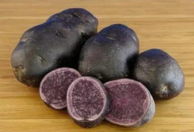картофель гурман описание сорта