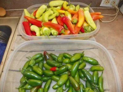 как хранить перец чили