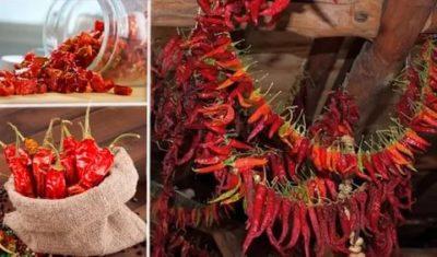 как сушить перец чили в домашних условиях