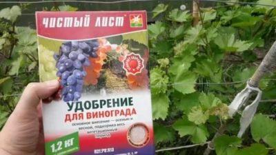 удобрение для винограда весной