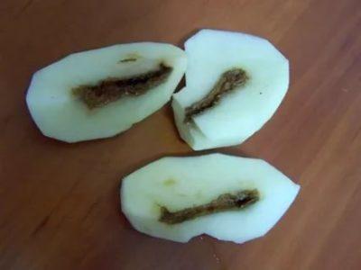 почему картофель чернеет внутри при хранении