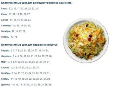 когда лучше солить капусту на зиму по лунному календарю