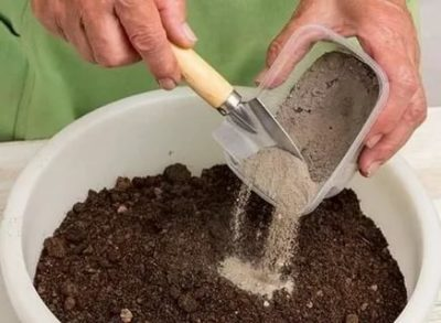 как подготовить грунт для рассады
