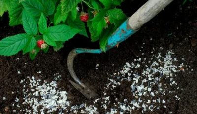 удобрение мочевиной весной