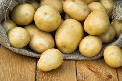 пароли сорт картофеля