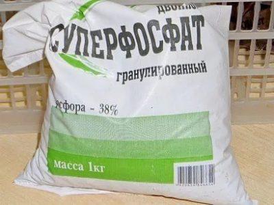 суперфосфат для лука