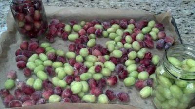 можно ли морозить виноград