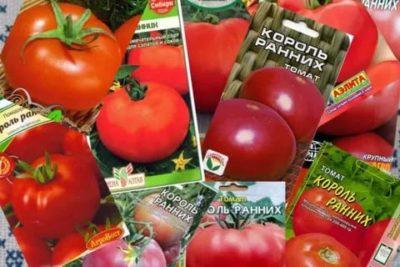 сорта томатов для кировской области